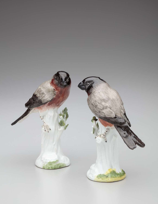 Meissen pair of bullfinches